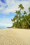 Your Own Tropical Beach. Semio-bandoned beach on a tropical isle near the equator Royalty Free Stock Photo