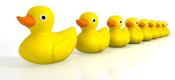Your Toy Rubber Ducks In A Row. A row of organised and ready yellow rubber bath duck toys on an background vector illustration