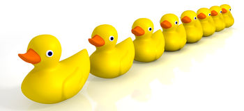 Your Toy Rubber Ducks In A Row. A row of organised and ready yellow rubber bath duck toys on an background stock illustration