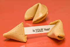 Your Year Fortune Cookie With Blank Year Royalty Free Stock Photography