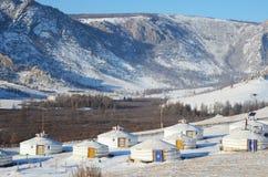 Yourt obóz w rezerwacie przyrody Terelj, Mongolia Obrazy Stock