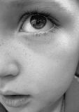 Youth. Bright-eyed child with freckles. Black and white image Stock Images