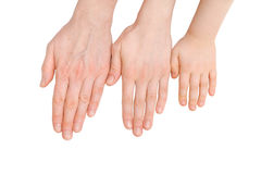 Youth, adult and senior palms. The ageing process. Youth, adult and senior palms on white. The ageing process royalty free stock photos