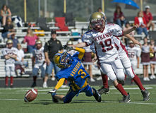 Youth American Football Stock Image