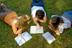 Youth Bible Study. College Bible study on grass in late afternoon Stock Photography