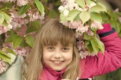 Youth, bloom, freshness royalty free stock photo