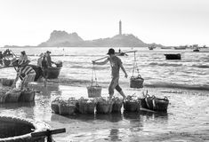 Youth burden anchovy fishing village on the Market Royalty Free Stock Photos