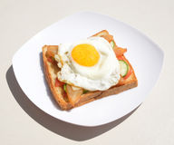 Youth egg sandwich Stock Images