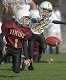 Youth Football, loose ball. October 10, 2009 American Football (Youth 3-4th Grade) Oregon's Forest Grove Vikings (Maroon) V Forest Grove Vikings (White/Gold) Royalty Free Stock Photos
