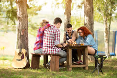 Youth having fun playing chess in wood Stock Photo