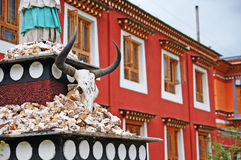 Youth hotel courtyard cattle skulls. In China's gansu gannan youth hotel shooting Stock Photo