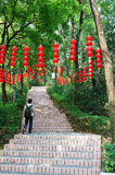 Youth lantern and steps Stock Photo