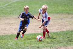 Youth Soccer Football Players Running with the Ball. Young boys chase the soccer ball during the Breakers Cup Soccer Tournament in Santa Cruz, California, USA Royalty Free Stock Image
