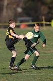 Youth Soccer Player. Youth male soccer players in game action Royalty Free Stock Photos