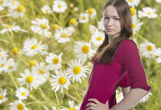 Youth woman and camomiles Stock Photo