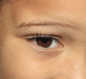 Youthful eye. Young brown eye with long lashes Stock Photo
