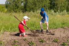 Youthful farmers. Little girl and boy with hoes Royalty Free Stock Photos