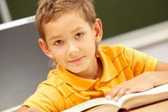 Youthful reader Royalty Free Stock Image