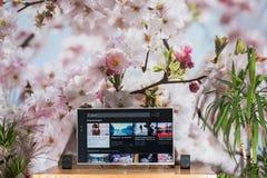 YouTube app на ТВ Сони умном стоковые изображения
