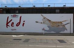 YouTube Turkish Street Cats Documentary Film `Kedi`  advertising Royalty Free Stock Image