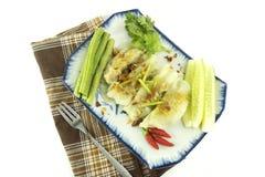 Yowza grönsak royaltyfri bild