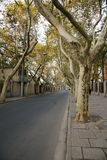 Yoyang road. It's a view about Yoyang road.It's quite peaceful Stock Image