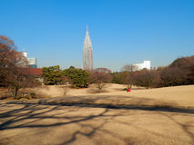 Yoyogi Park. In central Tokyo on a clear winters day Stock Image