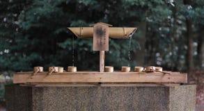 Yoyogi park at Tokyo royalty free stock photo