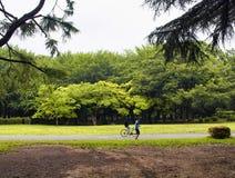 Yoyogipark in Tokyo Royalty-vrije Stock Afbeeldingen