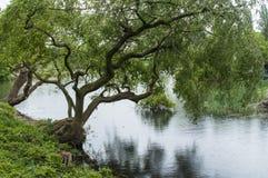 Ypres Park at lake stock photo