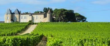 ` Yquem, región de los Sauternes, Aquitania, franco del viñedo y del castillo francés d Imagenes de archivo