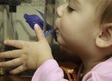 2yr女孩亲吻了她心爱的Betta鱼 库存照片