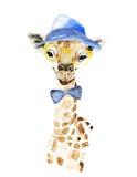 Żyrafa modniś Obrazy Royalty Free