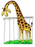Żyrafa zoo Africa rysunkowy humor ilustracja wektor