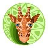 Żyrafy głowa projekta wektoru ilustracja Obrazy Royalty Free