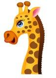 Żyrafy kierownicza kreskówka Obrazy Stock