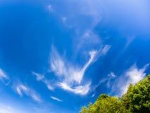Yrande skummen fördunklar på blå himmel Royaltyfria Bilder