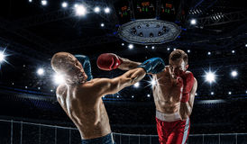 Yrkesmässig askmatch Blandat massmedia Royaltyfria Foton