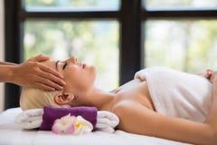 Yrkesmässig head massage fotografering för bildbyråer