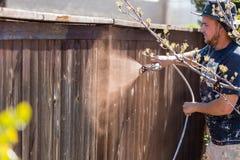 Yrkesmässig målare Spraying Yard Fence med fläck royaltyfria bilder
