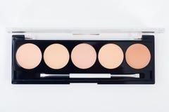 Yrkesmässig makeupsamlingssats Royaltyfri Bild