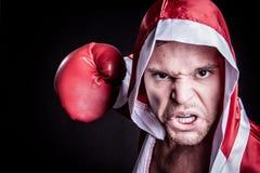 Yrkesmässig manlig boxare Arkivfoto
