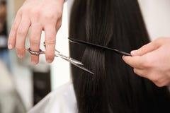 Yrkesmässig manlig frisör som arbetar med klienten Royaltyfri Foto