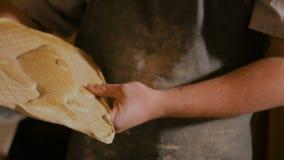 Yrkesmässig manlig keramiker som arbetar i seminarium stock video