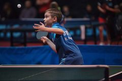 Yrkesmässig pojke för barn för bordtennisspelare junior Mästerskapturnering royaltyfria bilder