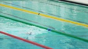 Yrkesmässig simmare som förbereder sig för konkurrens, vattensportar, aktiv livsstil arkivfilmer