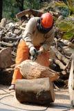 Yrkesmässig skogsarbetare Fotografering för Bildbyråer