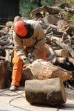 Yrkesmässig skogsarbetare på arbete i skogen Arkivfoton