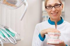 Yrkesmässig tandläkare som arbetar på hans tand- klinik fotografering för bildbyråer