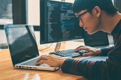 Yrkesmässig utvecklingsprogrammerare som arbetar, i att programmera websiten en programvara och att kodifiera teknologi och att s royaltyfri fotografi